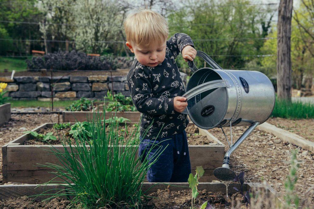 Little boy watering the garden